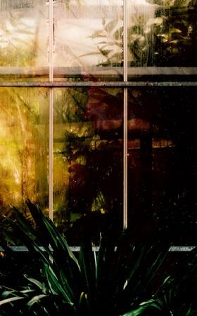Les jardins de Nephilis - Maquette verso